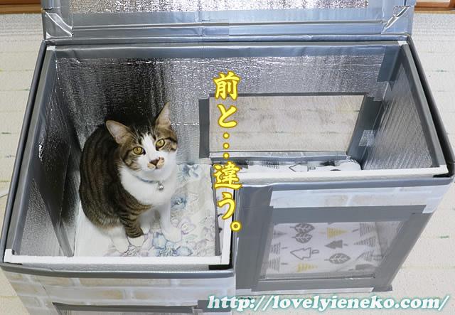 窓イメージ画像